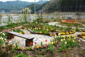 2014年4月22日ガーデン・チューリップ、樋口さん夫妻 016  圧縮