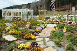 2014年4月22日ガーデン・チューリップ、樋口さん夫妻 021