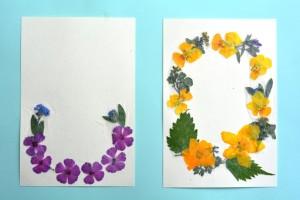 2014年5月15日ー5押し花はがき 002 圧縮