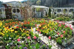 2015年4月21日ガーデン,夕日 022