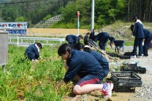 2015年5月8日桜ヶ丘高校 011