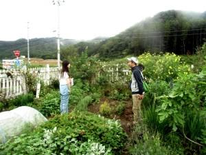 2015年8月23日東北トリップ。京都おだりなはーれ 003