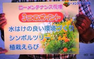 2015年10月25日鎌田さんNHK趣味の園芸 108