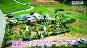 2016年456趣味の園芸・雄勝花物語の紹介 007
