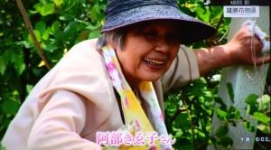 2016年456趣味の園芸・雄勝花物語の紹介 013