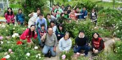 2016年6月4日千葉大学、バラ 135