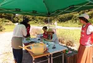 2016年8月11日ひまわり祭り千葉大学 004